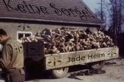 Jade Helm - Militärblockade gegen Gottes Zeugen